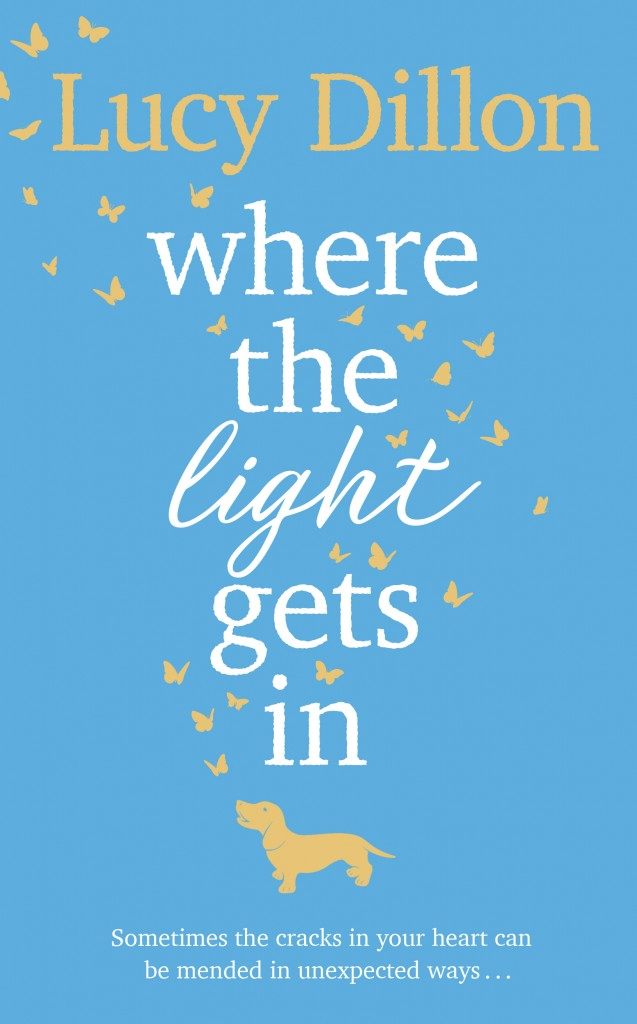 The finished cover for the hardback edition of Where The Light Gets in